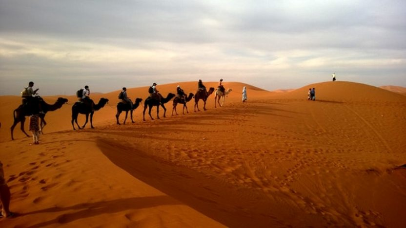Photo of Are You Want To Book Desert Safari Dubai Tour?