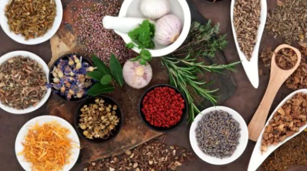Photo of Herbs that Provide Natural Pain Relief