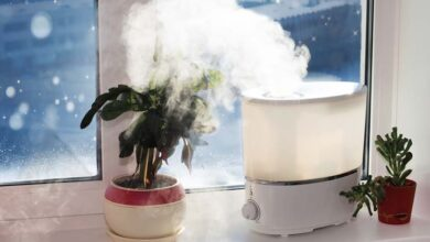 humidifier in winter