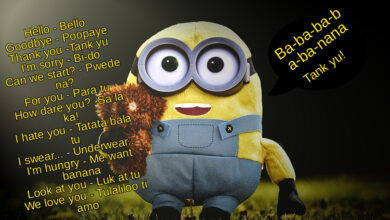 thank you minion