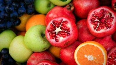 Succulent Fruits